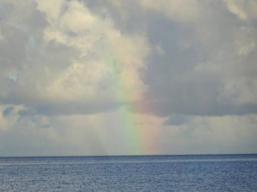 DSC01185 - 虹