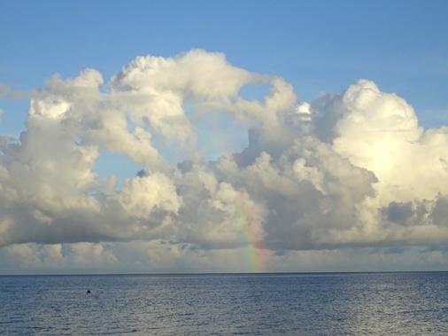 DSC01186 - 虹