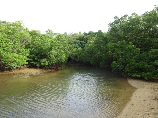 DSC01331 - カブルマタ川