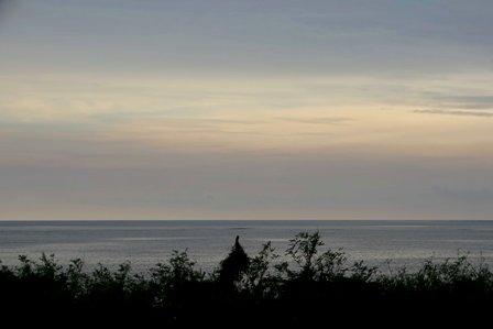曇り朝焼け DSC07712