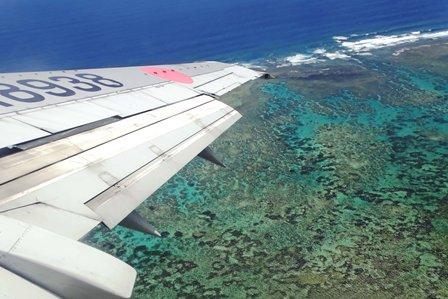 石垣島のサンゴ礁 DSC07985