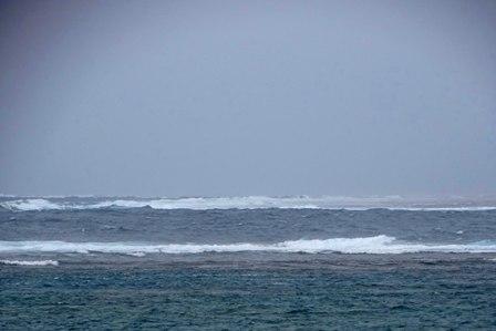 台風14号の波 DSC08726