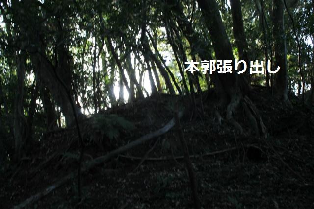 IMG_9441.jpg