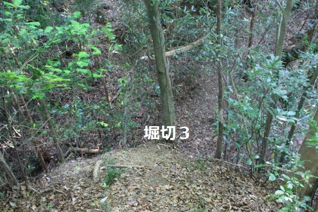 IMG_9972.jpg