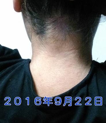 pnR6xFyB4hPRJvJ1474547477_1474547545.jpg