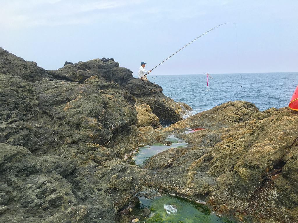 20160527石鯛 (3)