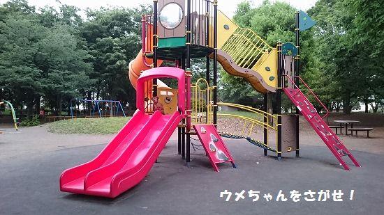 s-DSC_0831編集1