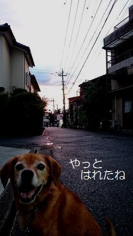 s-DSC_1076編集2