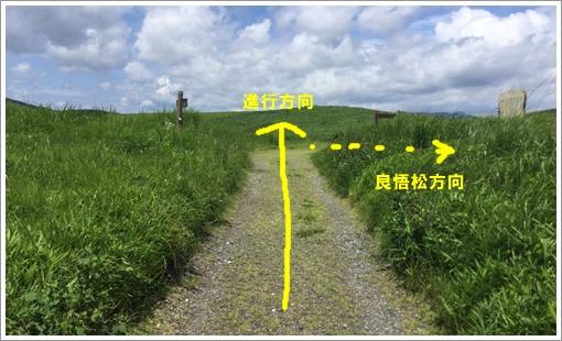 2016akiyoshi_juso23.jpg