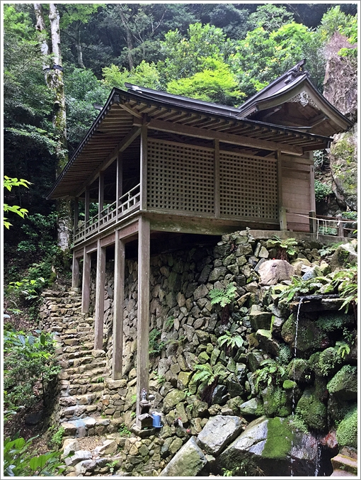 2016kuruson_sugitani06.jpg