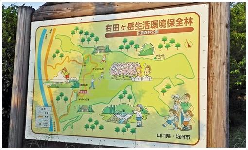 yahazu_shinrin01.jpg