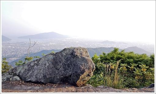 yahazu_shinrin04.jpg