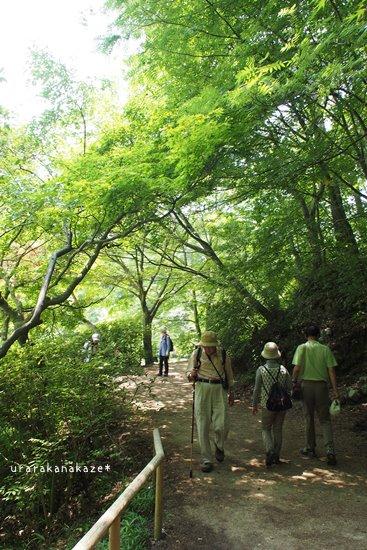 長谷池周辺 遊歩道