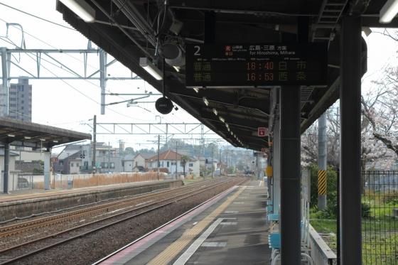 201604hatsukaichi-3.jpg