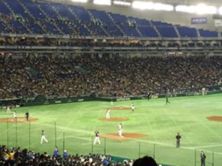野球観戦01