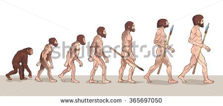 ヒトの進化