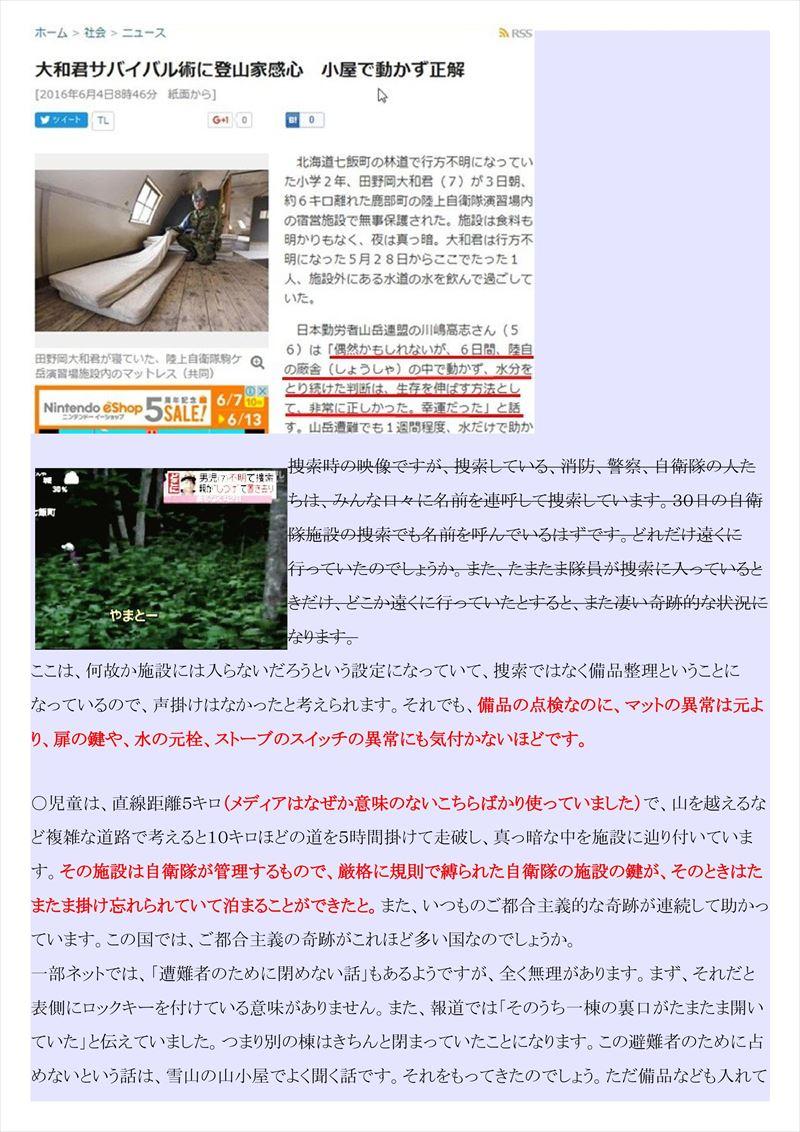 北海道大和君置き去り事件PDF画像013