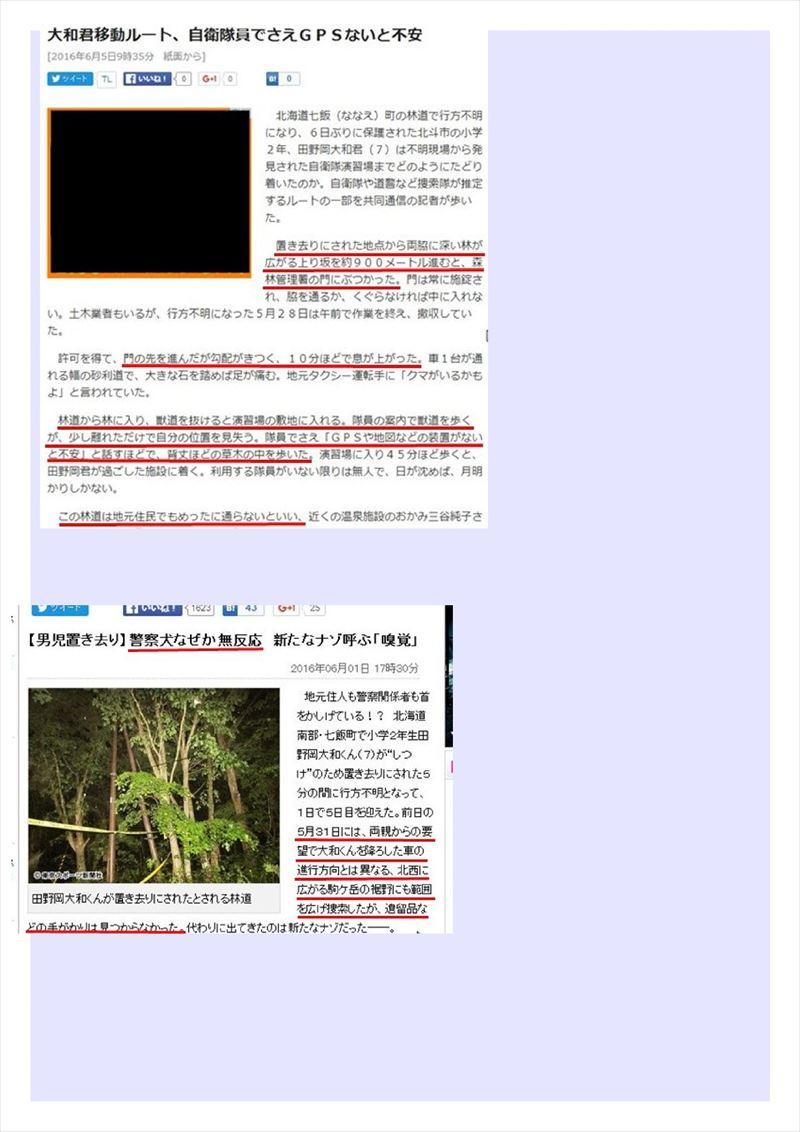 北海道大和君置き去り事件PDF画像018