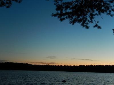 湖と木のシルエット1