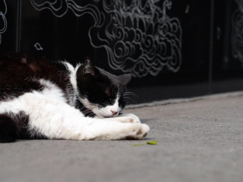 黒御影石のまで寝てる黒白猫