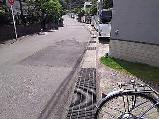 senhaji2-1.jpg