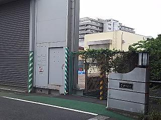 sibuya13.jpg