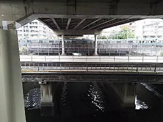 sibuya3.jpg