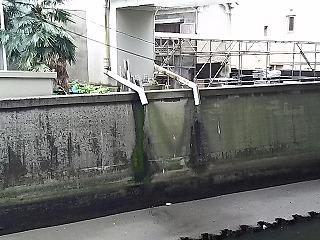 sibuya6.jpg