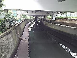 sibuya7.jpg