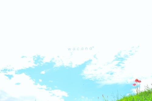 WCN_0711.jpg