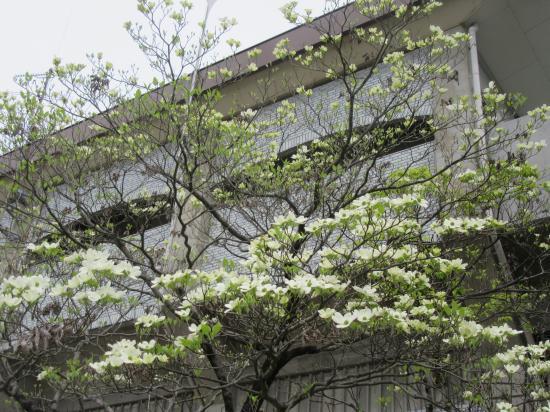 2016.4.25兵庫6