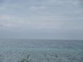 2016.5.30沖縄9