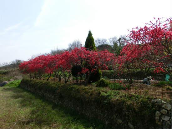 2014-04-03 002 112