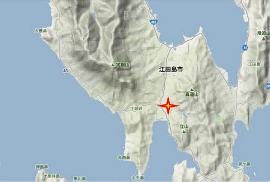 4)能美町・沖美町南部 ソテツ