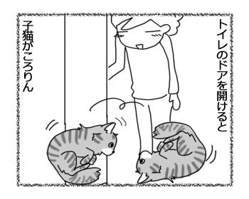 羊の国のビッグフット「子猫がころりん」1