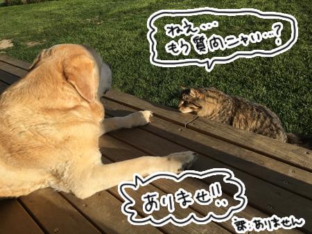 羊の国のビッグフット「アーネストの犬のお悩み相談」1