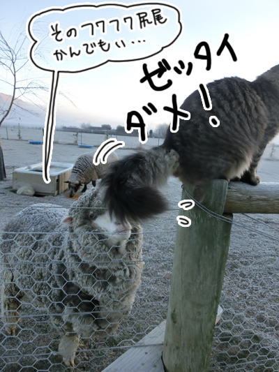 羊の国のビッグフット「日曜日」3