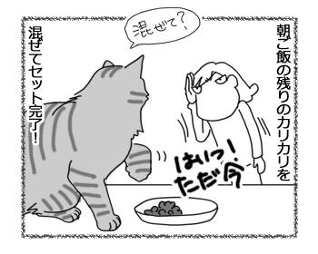羊の国のビッグフット「甘えん坊さんセット」4