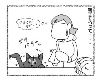 17102016_cat3.jpg