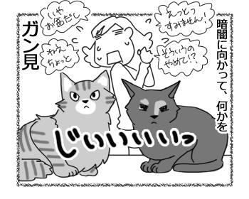 羊の国のビッグフット「おくり猫」4