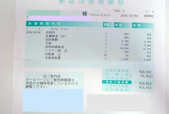 1_10_20161005162714808.jpg