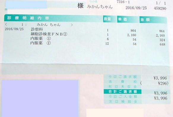 2_09_20160927184548b8a.jpg