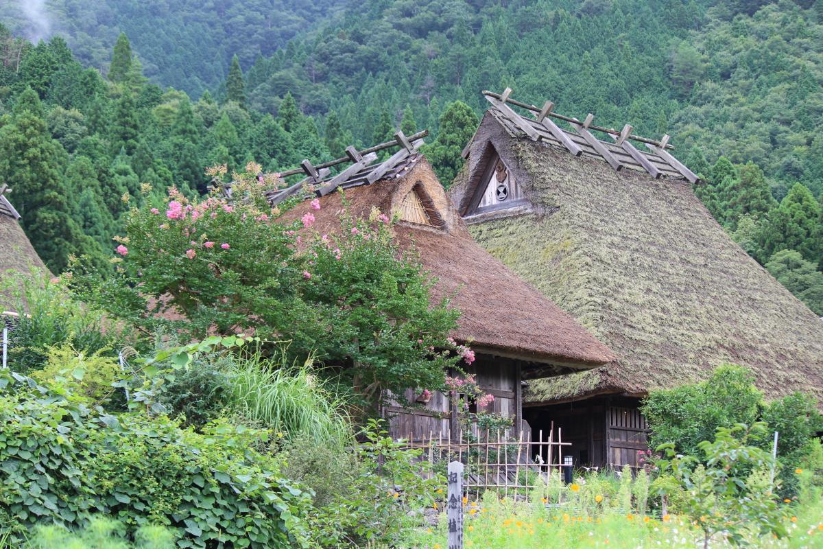 美山にて1