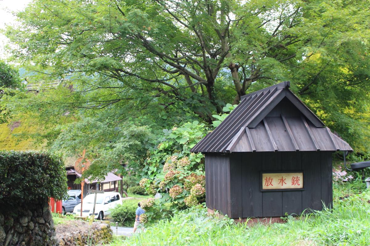 美山にて3