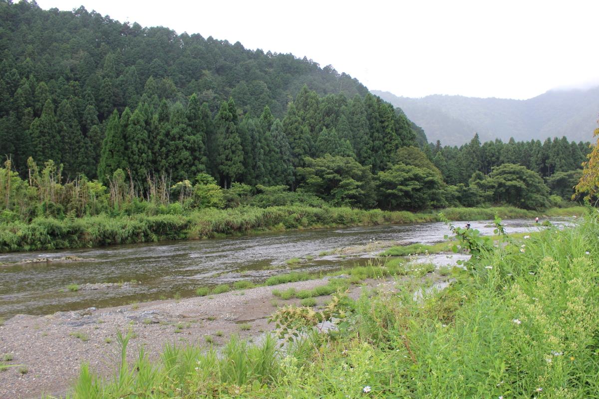 美山にて8
