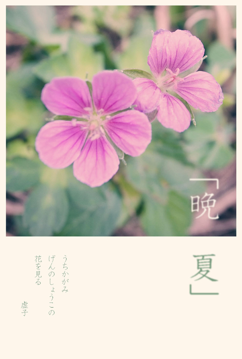 16_8_30_3.jpg