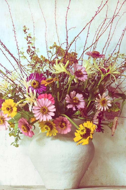 floweres_16_9_29.jpg