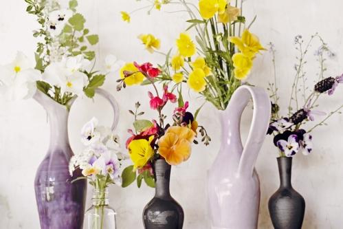 flowers_16_5_8_7_3.jpg