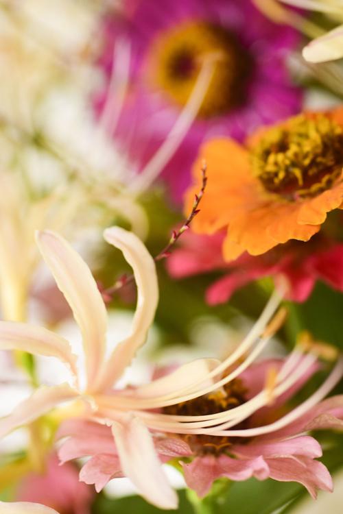 flowers_16_9_30_1.jpg