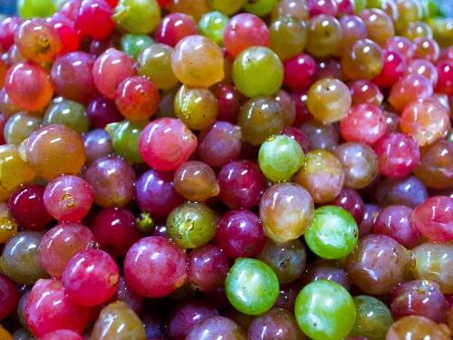 grape_juice_4.jpg
